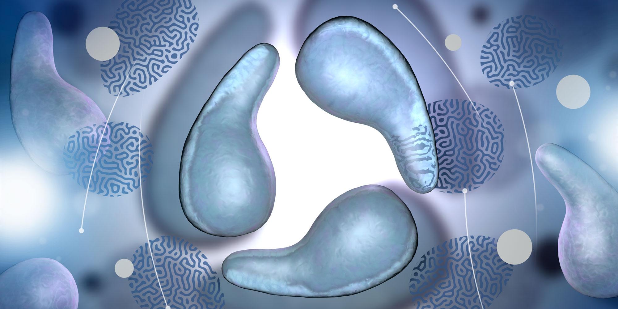Mycoplasma genitalium: considerations for testing and