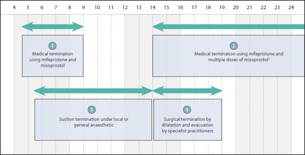 Appendix 1 - Termination of Pregnancy in New Zealand